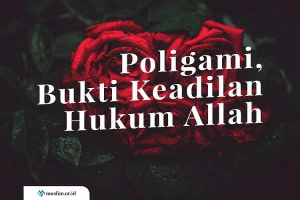 Poligami, Bukti Keadilan Hukum Allah