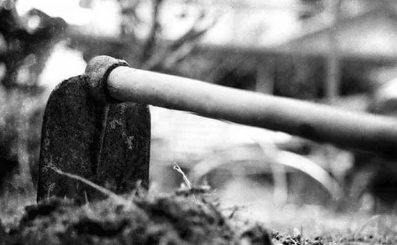 Penjelasan Hadits: Alat Pertanian Mengundang Kehinaan