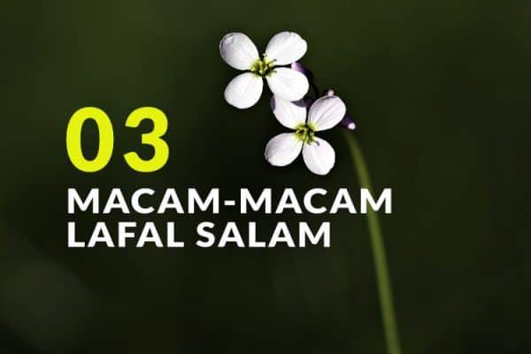 Macam-Macam Lafal Salam (Bag. 3)